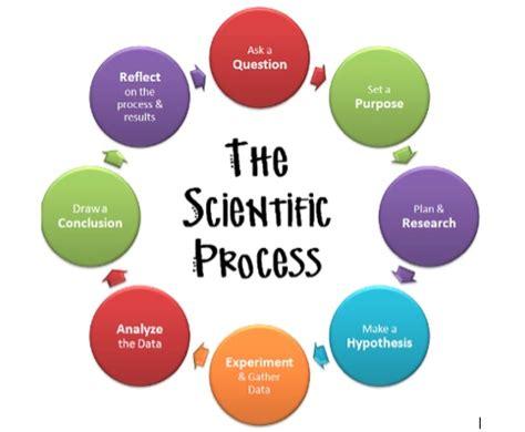 Scientific method essay