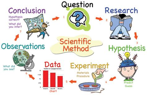 A Guide to Writing Scientific Essays